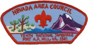 Shoulder Patches and Community Strips Boy Scout