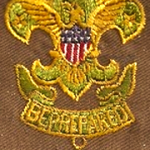 Assistant Scoutmaster Type 2 Patch