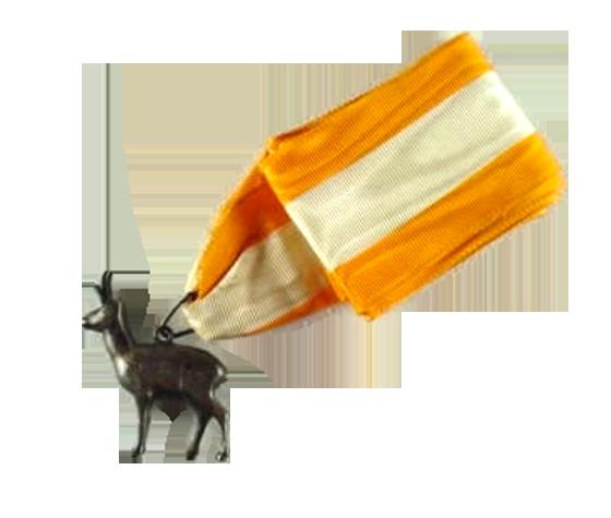 antelope-display