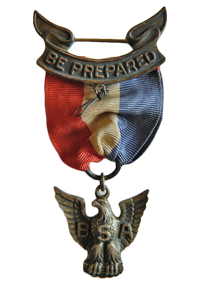 Robbins Type 2 Eagle Scout Award