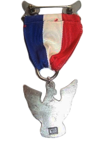 Robbins Type 4 Eagle Scout Award